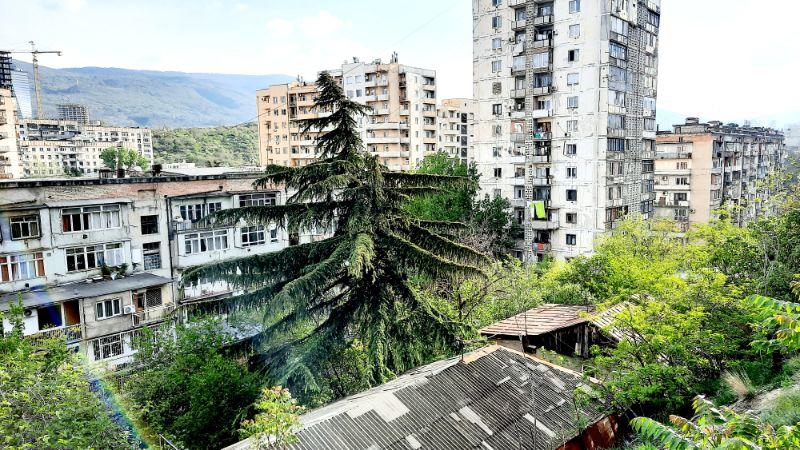 Blick auf das Bachtrioni Quartier in tbilisi mit schöner alter Libanon-Zeder